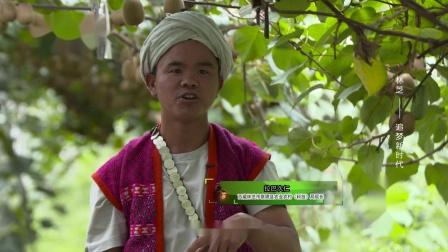 《美丽中华行》之《林芝——追梦新时代》