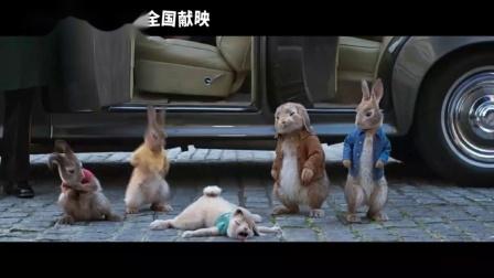 《比得兔2:逃跑计划》电影完整版主页找