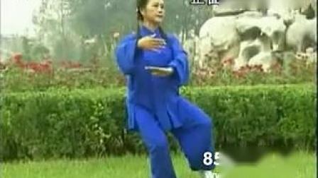 85式杨式太极拳(王天玉).flv