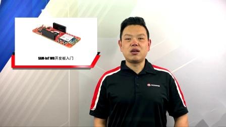 SAM-IoT WG开发板入门