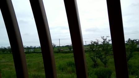 浙江温州龙湾飞机场郊区田园风光