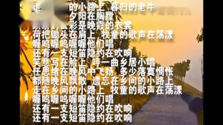 音乐七年级下册 湘教版 乡间的小路范唱(第一集)