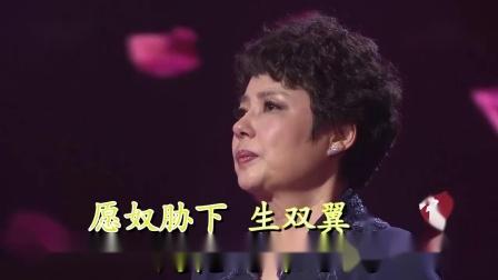 葬花吟(伴奏)-陈力-双行字幕-超清-王新民制作