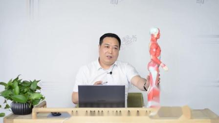 刘涛中医五绝挑羊毛疔治综合病(三)