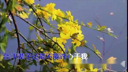 月下思故人&红蔷薇《携手》(红蔷薇原声&高山流水翻唱)