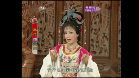 黄梅戏《女驸马》洞房之(二)(驸马·公主)配音/戏韵风采