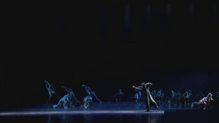 第十二届荷花奖 原创当代舞 编号1202作品