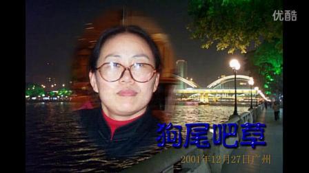 14 京剧 沙家浜 智斗 狗尾巴草╱新编2002元宵网会