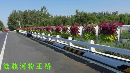 徒骇河禹城北外环粉王桥