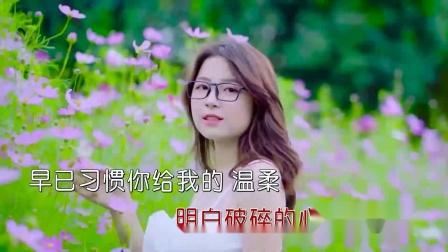 超清1080p无水印-小倩 - 痴心不改(DJ阿圣版)