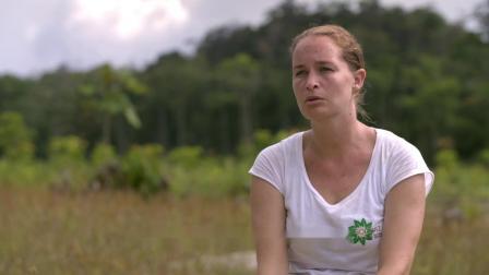 开云集团:法属圭亚那矿区植树项目