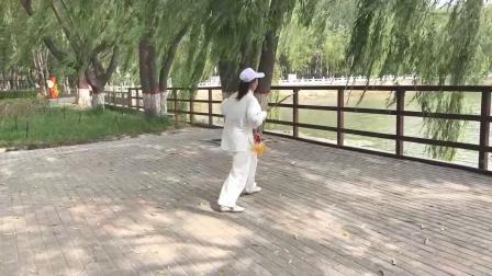 简化传统杨氏51剑_