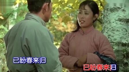 雁南飞-董文华(原版伴奏)