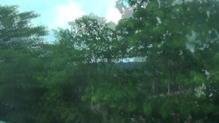 汽车通过那洪大桥