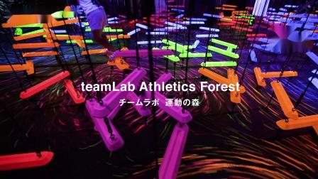 运动森林, 森大厦数字艺术美术馆:teamLab无界