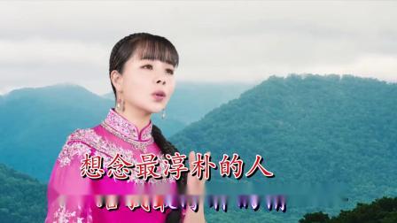 月是故乡明(伴奏)-王二妮-双行字幕-超清-王新民制作