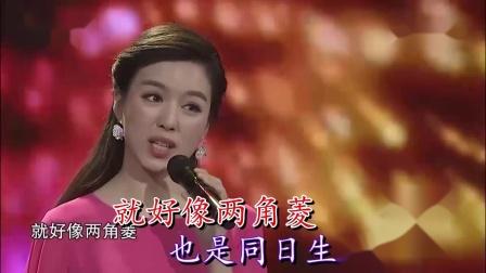 采红菱-易文卉-双行字幕-超清-王新民制作