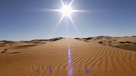 林媚--天边的骆驼★