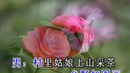 山茶花.(对唱伴奏、升调).mkv