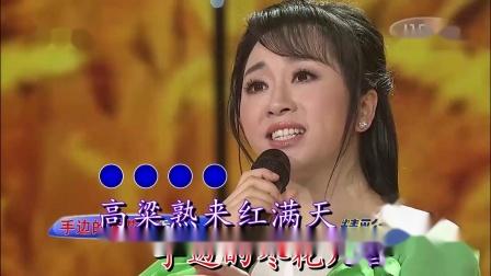 九儿(伴奏)-金婷婷-双行字幕-超清-王新民制作