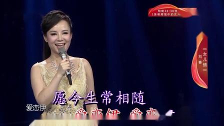 女儿情(伴奏)-刘赛出镜-吴静演唱-双行字幕-超清-王新民制作