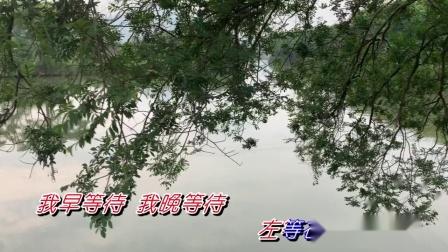 黄晓君-把爱情收回来