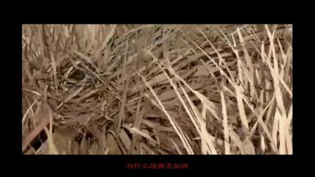 英雄赞歌(启航新时代-致敬人民军队).mkv