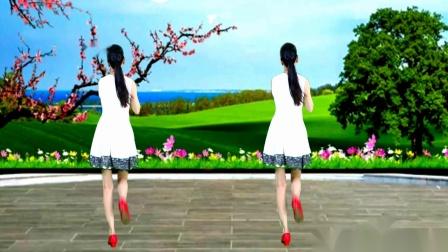 情歌美舞《蝴蝶不懂花的泪》原创背面示范教学,好听好看易学好跳