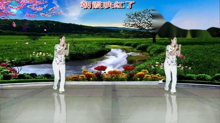 春和广场舞正面演示天鹅湖畔