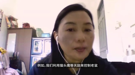 Sarimanah采访中字