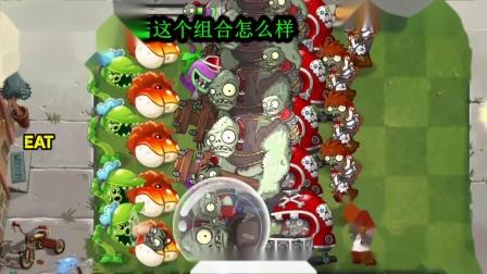 植物大战僵尸金蟾菇组合怎么样