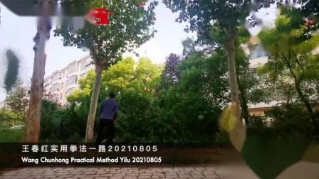 王春红实用拳法一路20210805