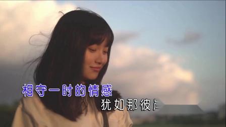 李西京 - 红尘夙愿MTV