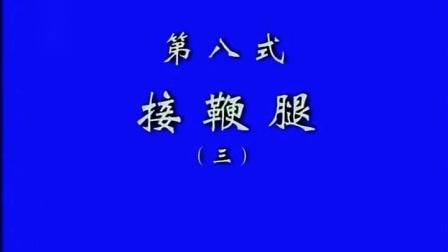 8、张东武 太极散手实战用法(第8式 3、接鞭腿)