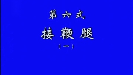 6、张东武 太极散手实战用法(第6式 1、接鞭腿)