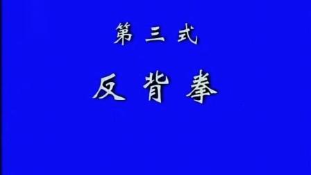 3、张东武 太极散手实战用法(第3式 反背拳)