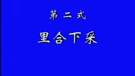 2、张东武 太极散手实战用法(第2式 里合下采)