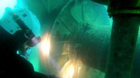 D710&D530 水下探索照明 潜水照明装备 OrcaTorch虎鲸