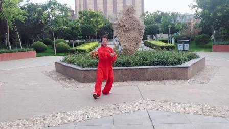 传统杨氏太极拳28式 宋莉芬