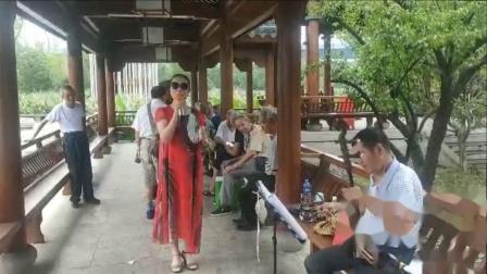 2021年8月20日《越剧》黛玉葬花,芸芸演唱,甬闻录制。