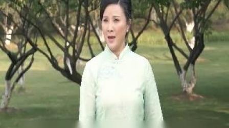 越剧《何文秀》雁南飞(陈飞).双声道
