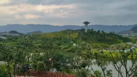 来自自然的印记.莲花湖及其它