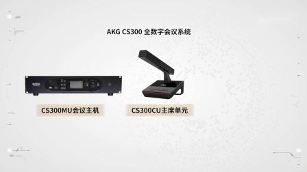 AKG CS300