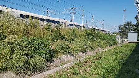 20210911 160153 徐兰(郑西)高铁G1876次列车出华山北站
