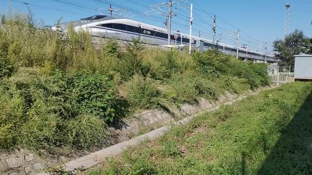 20210911 161237 徐兰(郑西)高铁G3285次列车进华山北站