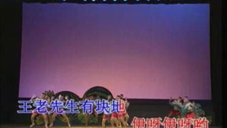 儿童歌伴舞 鲁冰花 4-31