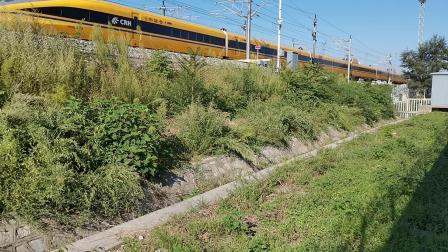 20210911 162436 徐兰(郑西)高铁CRH380AJ进华山北站,待避G55和G2679次列车