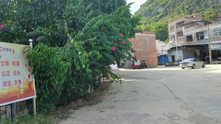 徐霞客记载的仙庙山脚下 八月十五竟然如此安静 只有花香鸟语环境