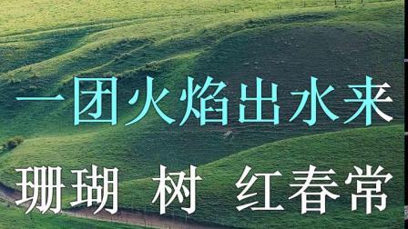 珊瑚颂 翻唱 壹片雪花.avi