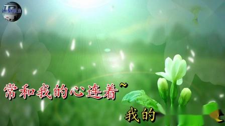 曲剧《秦雪梅》秦雪梅扶灵柩珠泪簌簌 选段  演唱:李小双